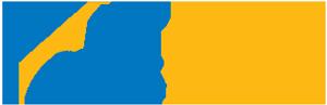 DFS Portfolio Solutions Logo